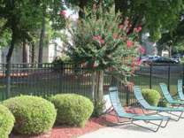 1 Bed - Meadowood Apartments
