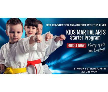 Korean Martial Arts for Kids is a Sports Lessons service in Miami FL