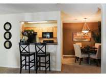 1 Bed - The Nevadan