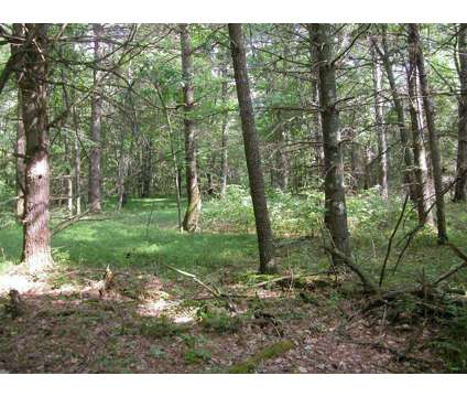 5 acres by the Fish Lake Wildlife Area at 22541 Hickerson Road in Grantsburg WI is a Land