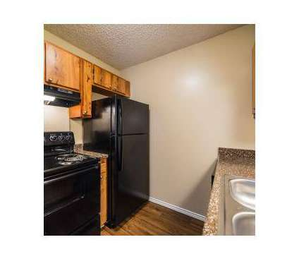 1 Bed - Lodge at Timberhill at 5544 Timberhill in San Antonio TX is a Apartment