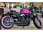 2013 Harley-Davidson Sportster Forty-Eight CUSTOM BREAST CANCER AWARENESS