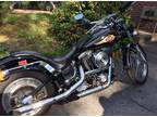1998 Harley Custom Soft Tail