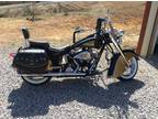2001 Indian Centennial Chief & Rare Black and Gold