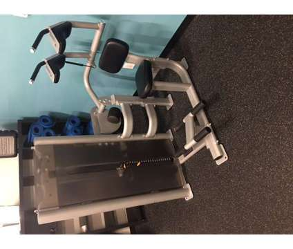 Precor C014ES Abdominal Machine is a Exercise Equipment for Sale in Mount Pleasant SC