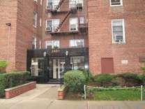 2461 East 29 St. #3B