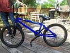 Dave Mirra Intro Five star Bicycle - $250 (Bushnell Florida)