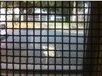 Antique Horse Stall Gates, Century Old Riveted Steel Mesh Construction