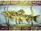 Details about �Richard Christopher Original Signed ACEO Trout (2.5 x 3.5in)