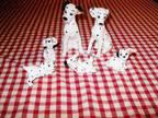 Walt Disney Vintage 101 Dalmations Dogs 6 piece Ceramic Figurines