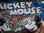 Mickey Mouse Shower -