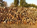 Seasoned Walnut Firewood - $120 (Kerman)