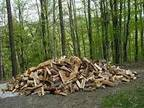 Firewood*Cut and Split* Will stack and load for you - $1 (Lenoir)