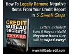 Stop living with bad credit ? fix it now