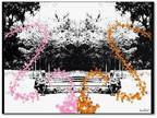 Trademark Fine Art 14 in. x 19 in. Pink and Orange Butterflies Canvas Art