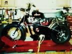 $1,995 New Custom 1971 Rupp Custom Built!!!