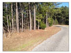 Florence, MS Rankin Country Land 5 acre