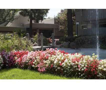 Studio - Cherrywood | 4951 Cherry Avenue San Jose CA | 4763018430 ...