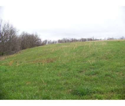 20 Acres Miller, Mo at 12711 Lawrence 2037 in Miller MO is a Land