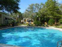 1 Bed - The Place at Carrollwood