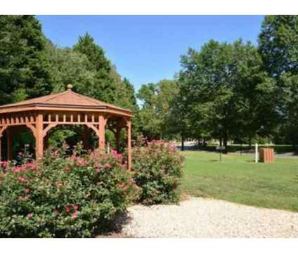 1 Bed   Amber Ridge At 5601 Goldthread Ln In Richmond VA Is A Apartment