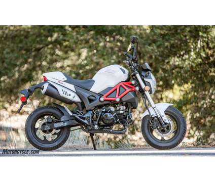 SSR 125 Razkull Honda Grom Style Bike New is a 2018 Road Motorcycle in Sacramento CA