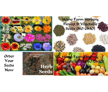 Seeds, seeds and more seeds, Place your order now, FREE shipping, FREE gift is a Lawn, Garden & Patios for Sale in Horse Cave KY