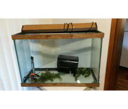 Aquarium 30 gallon is a For Sale in Lacey WA