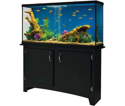 60 Gal. Aquariaum is a For Sale in Wilmington NC