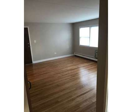 2 Bed / 1 Bath CLEAN Condo in Worth for rent. Move in ready at 10911 Lloyd, Worth Il in Worth IL is a Apartment