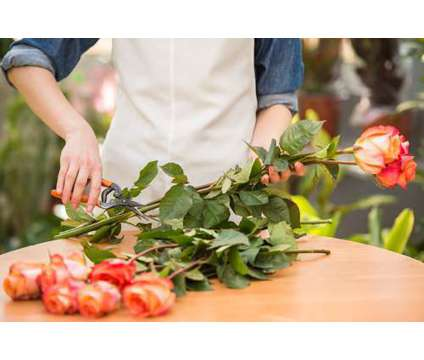 Busy Flower Shop in Calgary in Erskine AB is a Retail Property for Sale