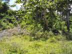 17.1 hectares Fertile Farm Zamboanga City PHI
