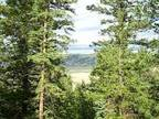 Hunting 2 Acre Land WITH PRIVATE FISHING AND HUNTING ACCESS - $22900 (Park