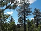 Happy Jack, AZ Coconino Country Land 5.000000 acre