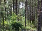 Thomaston, GA Upson Country Land 210.000000 acre