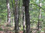 80 Wooded Acres Winona, MO