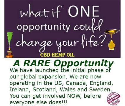 Home Business is a Part Time Home Business in Business Opportunity Job at Freedom Unleashed in Brevard NC