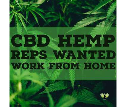 CBD Oil Opportunity is a Gig Cbd Oil Opportunity in Business Opportunity Job at Hempworx in Orlando FL