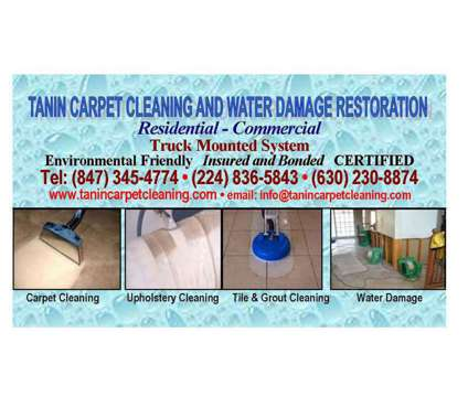 Tanin Carpet Cleaning, Tile Cleaning, Area Rug Cleaning Libertyville/ Vernon Hil is a Carpet & Upholstery Cleaning service in Vernon Hills IL