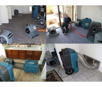 Lake Zurich Mold Removal, Mold Inspection, Water Damage restoration Kildeer, IL is a Construction & Remodeling service in Lake Zurich IL