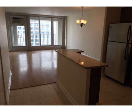 1Bed/1Bath Condo Rental at 1960 N Lincoln Park West in Chicago IL is a Condo