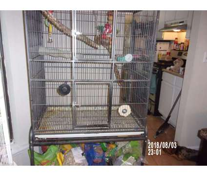 Bird Cage large is a For Sale in Lithonia GA