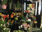 Business For Sale: Florist
