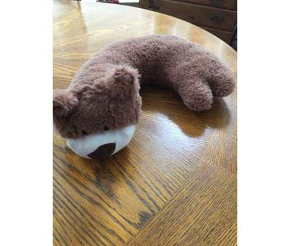 Bear Neck Pillow is a Brown, White Everything Else for Sale in Wescosville PA