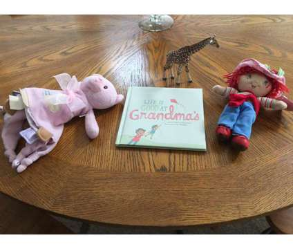 Strawberry Shortcake Doll, Blankie, Book, Giraffe is a Baby Grooming, Bathing, and Feedings for Sale in Wescosville PA