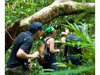 Natural Reserve - 165,56 Acres- Tropical Forest Protected
