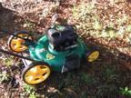 """Weedeater 22"""" 4.75HP High Wheel Lawnmower - $75 (Pooler)"""