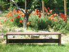 "Handcrafted Wooden Garden Bench 6 FT. / 72"" Long -"