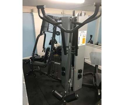Hoist 4400 Gym is a Exercise Equipment for Sale in Mount Pleasant SC