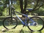 New GT Aggressor 3.0 Mountain Bike